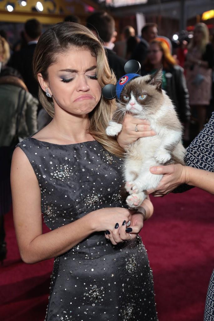 Sarah Hyland, Grumpy Cat